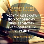 Адвокат у кримінальних справах Київ