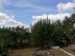 Urgent sell garden house 50 sq m with outbuildings, 6.63 acres, OK